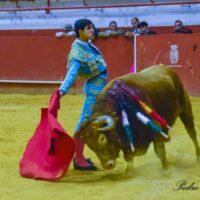 mario-sanchez-torero